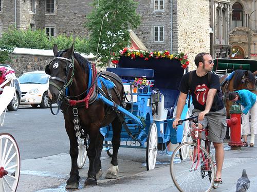 Les moyens de transport à Montréal