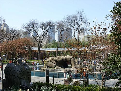 Central Park ou l'art de se détendre à New York