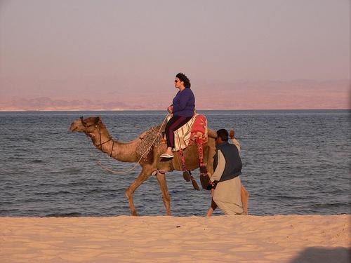 Le cricuit touristique typique pour un séjour Égypte