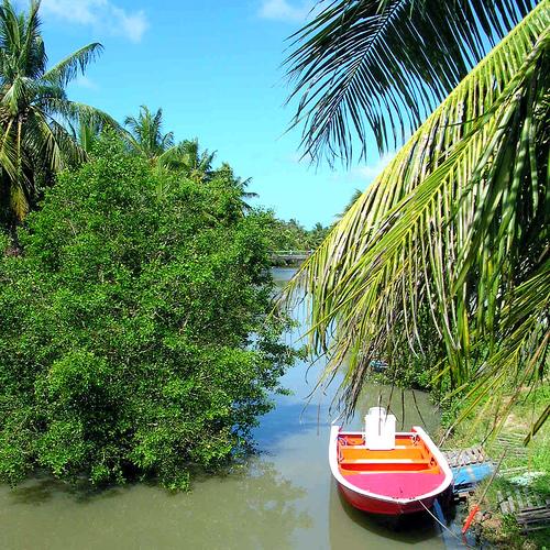 Besoins de conseils pour un voyage pas cher en Guadeloupe ? Voici quelques Astuces !