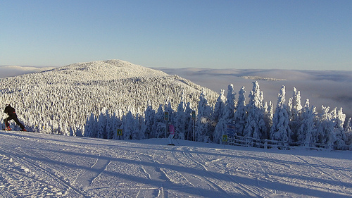 ski de fong Parc national du Mont-Trembland