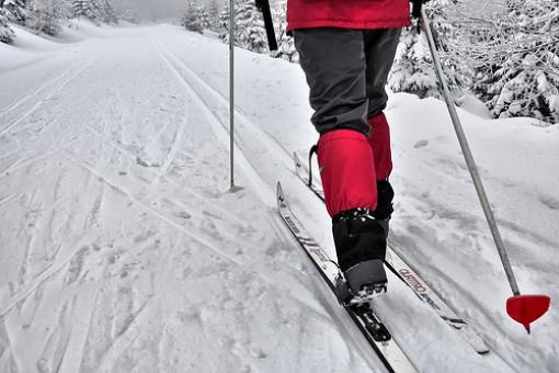 Ski de fond au parc de la Gatineau