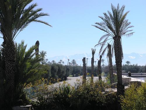 que voir marrakech