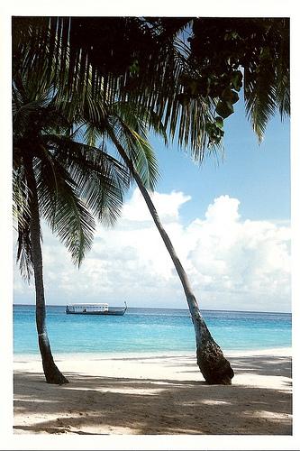 Les Maldives : quelle île choisir ?