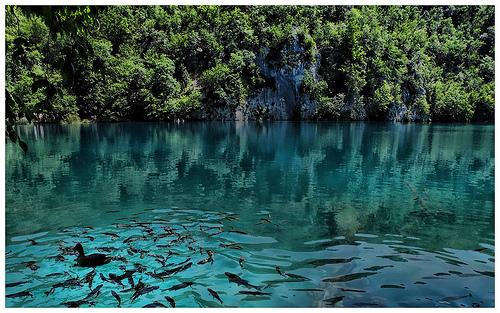 photos parc des lacs de Plitvice