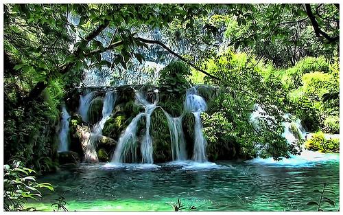 parc lacs de Plitvice photos