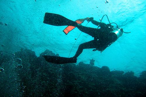 Voyage plongée sous-marine au Mexique